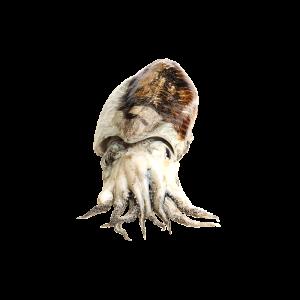 SEPPIA Image